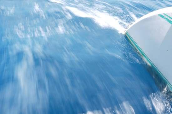 Amuitz dans le Pacifique