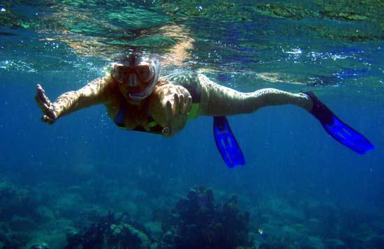 Fanfan sous l'eau.