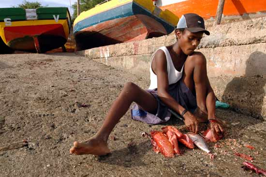 Sal capvert pêcheur.
